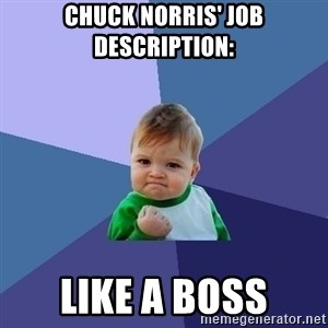 Success Kid - Chuck norris' job description: Like a boss
