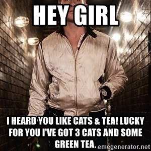 Ryan Gosling  - HEy Girl I heard you like cats & tea! Lucky for you I've got 3 cats and some green tea.