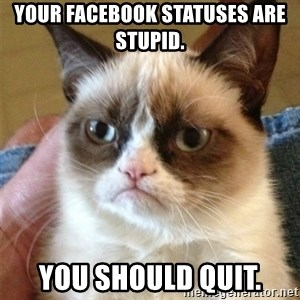 Grumpy Cat  - Your facebook statuses are stupid. You should quit.