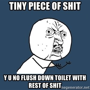 Y U No - tiny piece of shit y u no flush down toilet with rest of shit