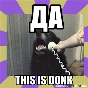 Yes, this is dog! -  да  THIS IS DONK