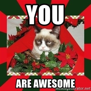 GRUMPY CAT ON CHRISTMAS - YOU ARE AWESOME