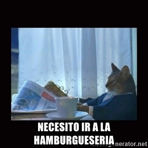 i should buy a boat cat - necesito ir a la hamburgueseria