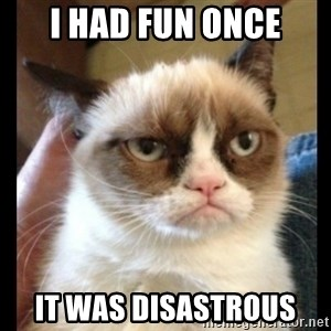 Frown Cat - I had fun once it was disastrous