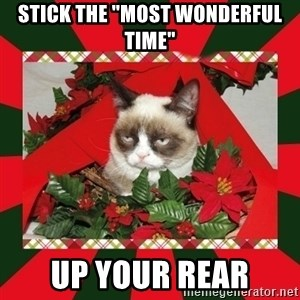 """GRUMPY CAT ON CHRISTMAS - Stick the """"most wonderful time"""" up your rear"""
