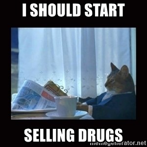 i should buy a boat cat - i should start selling drugs