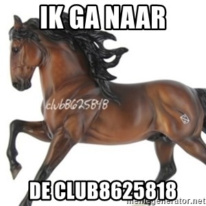 Typical horse model collector - IK GA NAAR DE CLUB8625818