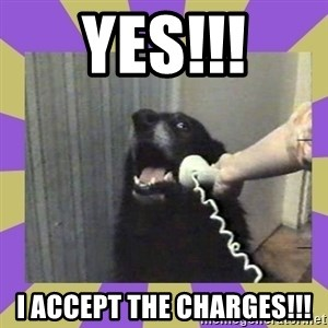 Yes, this is dog! - YES!!! I ACCEPT THE CHARGES!!!