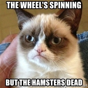 Grumpy Cat  - The wheel's spinning but the hamsters dead