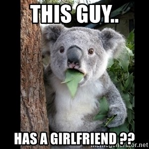 Koala can't believe it - This Guy.. Has a girlfriend ??