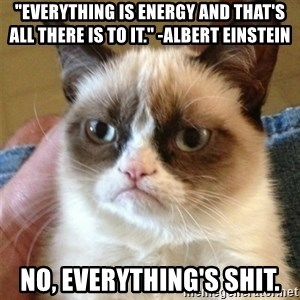 """Grumpy Cat  - """"Everything is energy and that's all there is to it."""" -Albert Einstein No, everything's shit."""