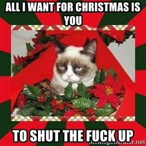 GRUMPY CAT ON CHRISTMAS - all i want for christmas is you to shut the fuck up