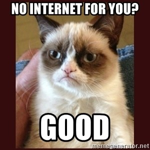 Tard the Grumpy Cat - No internet for you? Good