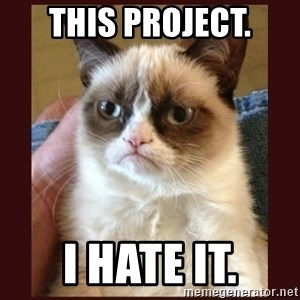 Tard the Grumpy Cat - This project. I hate it.