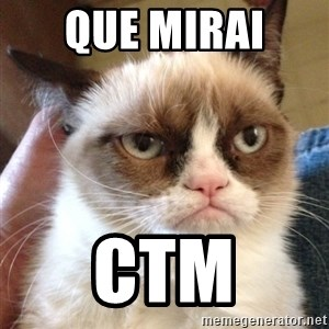 Mr angry cat - que mirai  ctm