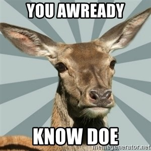 Comox Valley Deer - YOU Awready know doe