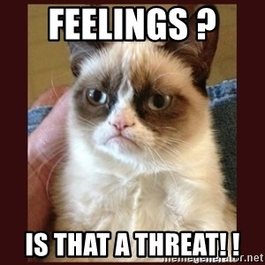 Tard the Grumpy Cat - Feelings ?  Is that a threat! !