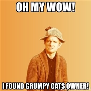 TIPICAL ABSURD - oh my wow!  I found grumpy cats owner!