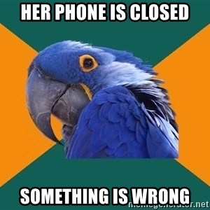 Paranoid Parrot - her phone is closed something is wrong