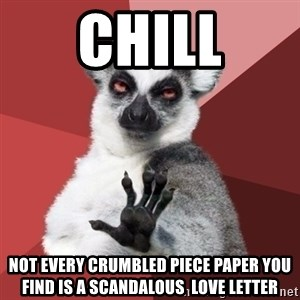 Chill Out Lemur - chill not every crumbled piece paper you find is a scandalous  love letter