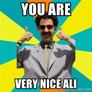 Borat Meme - you are very nice Ali