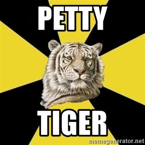 Wise Tiger - PETTY TIGER
