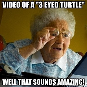 "Internet Grandma Surprise - video of a ""3 eyed turtle"" well that sounds amazing!"