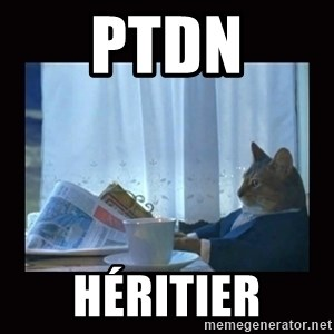 i should buy a boat cat - PTDN Héritier