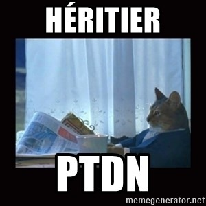 i should buy a boat cat - Héritier PTDN