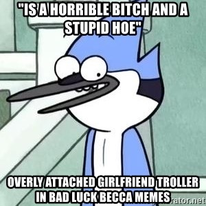 "The WTF Mordecai - ""is a horrible bitch and a stupid hoe"" overly attached girlfriend troller in bad luck becca memes"