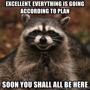 evil raccoon - Excellent, everything is going according to plan Soon you shall all be here