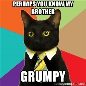Business Cat - perhaps you know my brother grumpy