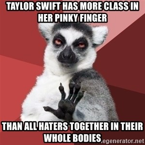Chill Out Lemur - Taylor Swift has more class in her pinky finger than all haters together in their whole bodies