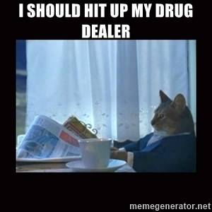 i should buy a boat cat - i Should hit up my drug dealer