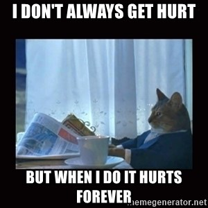 i should buy a boat cat - I don't always get hurt but when i do it hurts forever