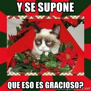 GRUMPY CAT ON CHRISTMAS - y se supone que eso es gracioso?