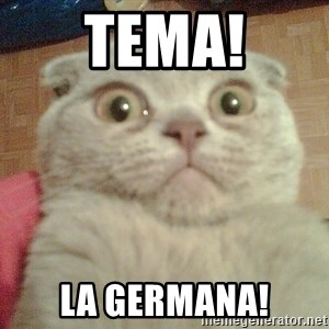 GEEZUS cat - TEMA! LA GERMANA!