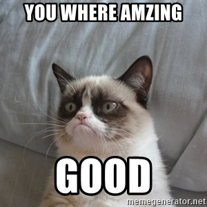 moody cat - You where Amzing GOOD