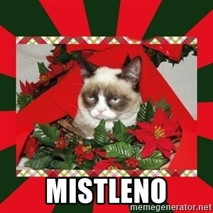 GRUMPY CAT ON CHRISTMAS - mistleno