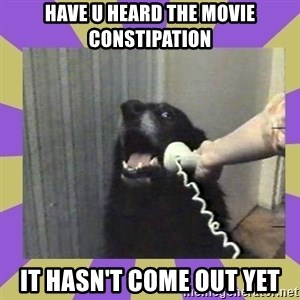 Yes, this is dog! - HAVE U HEARD THE MOVIE CONSTIPATION IT HASN'T COME OUT YET