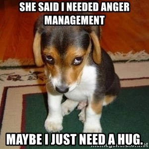 Sad Puppy - she said I needed anger management maybe I just need a hug.