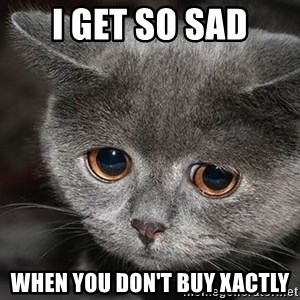 Sadcat - I get So Sad When You Don't Buy Xactly