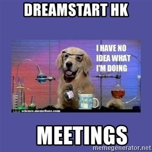 I don't know what i'm doing! dog - dreamstart HK    Meetings