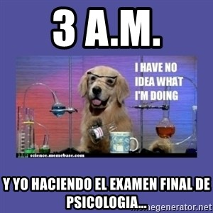 I don't know what i'm doing! dog - 3 a.m. y yo haciendo el examen final de psicologia...