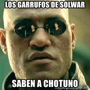What If I Told You - los garrufos de solwar saben a chotuno