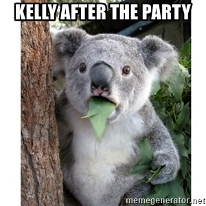 surprised koala - KellY After THE PARTY