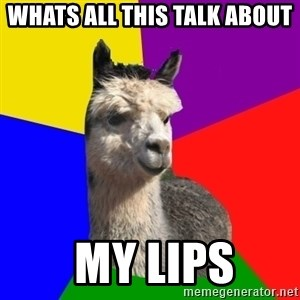Arashian Alpaca - Whats all this talk about   My lips