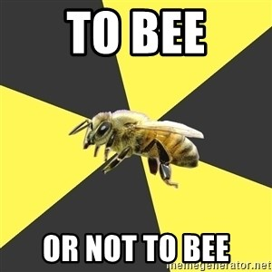 British High School Honeybee - to bee or not to bee