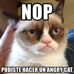 Mr angry cat - nop pudiste hacer un angry cat