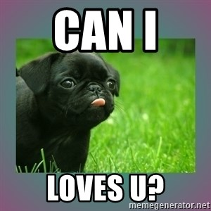 derp - can i  loves u?